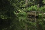 No Fishing - Im Capilano-Park Vancouver