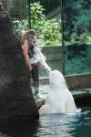 Ein Beluga-Wal spritzt eine Besucherin nass
